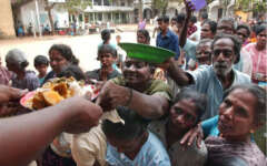 feeding food to needy